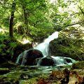 La cascade de Brisecou