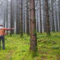 La Forêt de la Planoise
